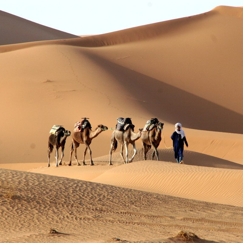 Experience Morocco Adventure Tours - Zayan Travel